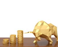 "Positioning Yourself for the ""New"" Bull Market in Gold"